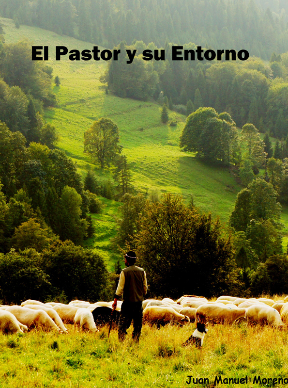 Portada libro El Pastor y su Entorno. Juan Manuel Moreno Escritor lectura bíblica